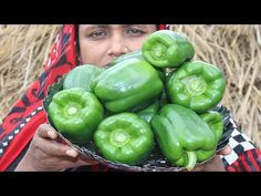 Village Food Farm Fresh Capsicum Recipe Village Style Tasty & Delicious Fresh Capsicum Fry Cooking - YouTube