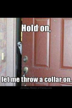 Hahaha! This made me laugh so hard!!
