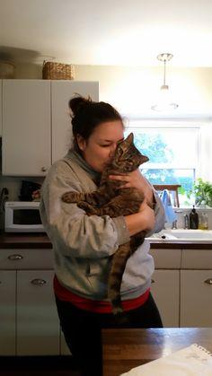 Alyssa & Biscuit Hug Your Cat Day, Biscuit, Biscuits, Cookie, Sponge Cake