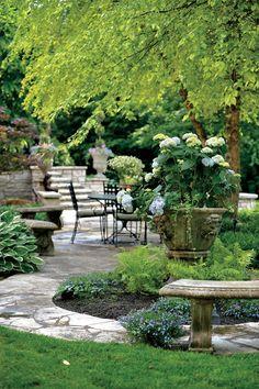 Shaded garden walkway with hydrangeas, ferns, and host as