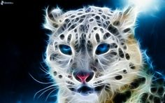 fractal cheetach, fractal animals x 1200 px] - Cartoons/Digital art - Pictures and wallpapers Tier Wallpaper, Animal Wallpaper, Cheetah Wallpaper, Windows Wallpaper, Fractal Images, Fractal Art, Mundo Animal, Leopard Pattern, Snow Leopard