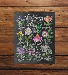 Wildflower Field Guide Chalkboard Art Print by Lily & Val on Scoutmob Shoppe