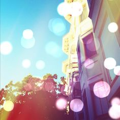Dazzle Your Photos With These Shining Effects: Boost your standard iPhone photography skills by adding the bokeh effect to your everyday snaps.
