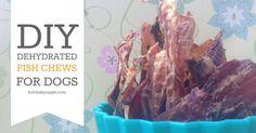dehydrated fish dog treat recipe FB