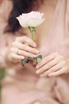Delicate hands holding a lovely rose~