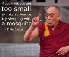 If you think you are too small...