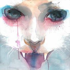 Marion Bolognesi watercolor cat