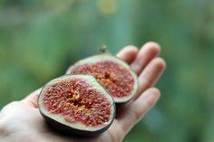 Rezeptsammlung Herbst   Projekt: Gesund leben   Ernährung, Bewegung & Entspannung