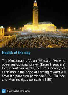 Prophet Muhammad Quotes, Sufi Quotes, Quran Quotes, Islam Muslim, Islam Quran, Religious Quotes, Islamic Quotes, Ramadan, Allah