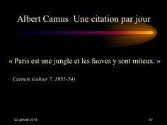 Albert Camus (1913-1960) n° 57