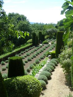 Nicole de Vesian. A garden full of texture.