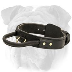 Quick Control #Dog #Collar with Handle $39.90