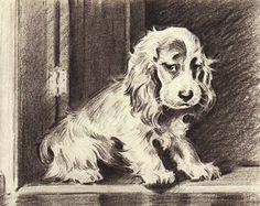 SPANIEL Print, PUPPY Print, 1940s Antique Dog Print, Morgan Dennis, Black & White Wall Decor, Book Page, Wall Art, English Setter