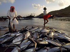 Fishermen in Sur