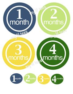 12 Monthly iron on heat transfer PLUS 12 small iron ons - for Baby - Color Blast. $9.00, via Etsy.