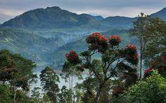 my little paradise sri lanka visit and enjoy - iii