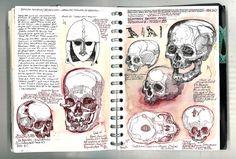 Drawing skulls in the British Museum. Arte Gcse, Artist Research Page, Art Sketches, Art Drawings, Kunst Portfolio, Gcse Art Sketchbook, A Level Art Sketchbook Layout, Art Alevel, Anatomy Art