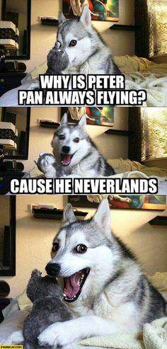 ''Why is Peter Pan always flying? Cause he Neverlands.''