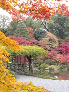 日本庭園、仙洞御所/Sentō-gosho garden, Kyoto