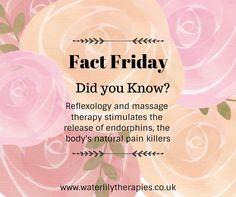 Reflexology Massage, Spa Massage, Massage Logo, Reflexology Benefits, Massage Benefits, Message Therapy, Massage Marketing, Massage Quotes, Massage Tips