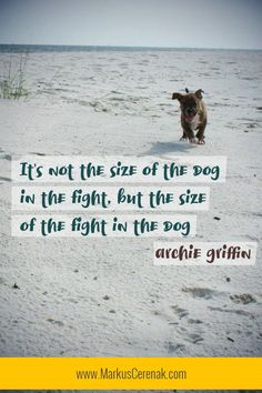 "Another great sporting motivational quote: ""It's not the size of the dog in the fight, but the size of the fight in the dog."" ~ Archie Griffin Get all the motivational quotes by clicking on the L. Short Encouraging Quotes, Powerful Inspirational Quotes, Inspiring Quotes About Life, Motivational Quotes For Athletes, Personal Development Books, Hamster, Areas Of Life, Art Academy, Encouragement Quotes"