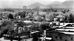 University of Arizona in history