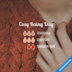 Cosy Rainy Day - Essential Oil Diffuser Blend