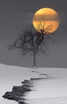 Photography Discover Winter snow moon Source by Moon Pictures Nature Pictures Moon Pics Moon Photography Landscape Photography Afrique Art Shoot The Moon Moon Painting Beautiful Moon Beautiful Nature Wallpaper, Beautiful Moon, Beautiful Landscapes, Moon Pictures, Nature Pictures, Moon Pics, Moon Photography, Landscape Photography, Amazing Nature