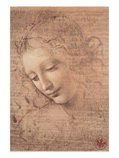 Leonardo Da Vinci's Female Head