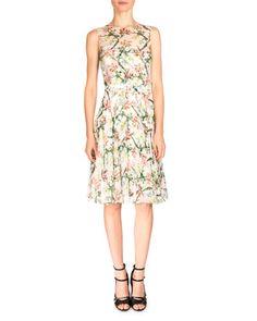 B37JM Erdem Brook Sleeveless Floral-Print Dress, White/Multi