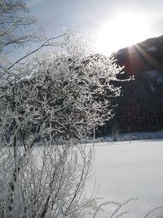 zimowe słońce