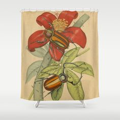 Giant Beetle Shower Curtain