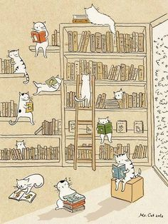 Cute illustrations by Ms. But she forgot to add drawings of cats sleeping on open books. Illustration Mignonne, Cute Illustration, Crazy Cat Lady, Crazy Cats, I Love Cats, Cute Cats, Photo Chat, All About Cats, Here Kitty Kitty