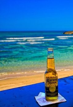 Corona beer. for the love of beer