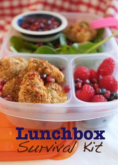 Whole article filled with lunchbox ideas