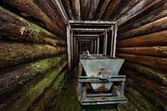 Kanarienvogel im Wertachtal   News Kees van Surksum Fotografie - Allgäu Schwaben Bodensee Für Nesselwang Tourismus im Sollen des alten Brauerei-Bergwerks in den Hängen des Wertachtals.