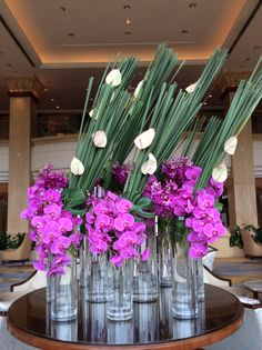 Orchid display at Shangri-la Pudong, Shanghai