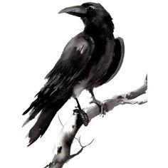Crow, raven original watercolor painting 9 X 12
