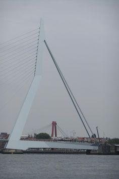 Erasmusbrug + Willemsbrug, Rotterdam, The Netherlands