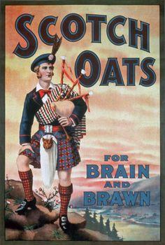 Vintage Scotch Oats Porridge For Brain & Brawn