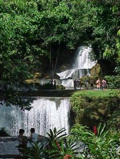 YS Falls, near Black River, Jamaica-  falls, pool, tubing, zipline (closed Mondays)  Really cool place and less touristy than Dunns River. $15 for tourist, 700J for residents/PCVs