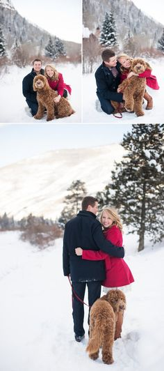 Wedding Colors Winter Engagement Pictures Ideas For 2019 Winter Engagement Photos With Dog, Winter Couple Pictures, Dog Christmas Pictures, Winter Family Photos, Christmas Couple, Christmas Dog, Dog Pictures, Christmas Card Photo Ideas With Dog, Christmas Cards