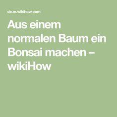 Aus einem normalen Baum ein Bonsai machen – wikiHow