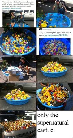 Jared and Jensen in a pool with lots of ducks
