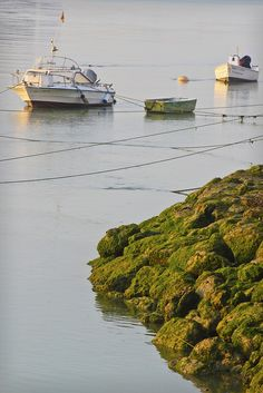 Boats at sunrise, Spain | by Jared Boduch, via Flickr