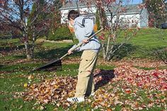 """New York Times """"Your Money"""" columnist Ron Lieber explains his approach to chores, allowance and after-school jobs for kids of all ages. Fall Lawn Care, Lawn Care Tips, School Jobs, After School, Chores And Allowance, Merchandising Tips, Rules For Kids, Pergola Pictures, Best Savings"""