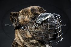 New Revolutionary Design Wire Cage #Dog #Muzzle - $31.90 | www.fordogtrainers.com