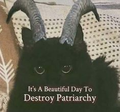 Riot Grrrl, Patriarchy, Aesthetic Grunge, Aesthetic Space, Aesthetic Memes, Cat Aesthetic, Aesthetic Outfit, Mood Pics, Reaction Pictures