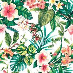 Hawaii Coral | Hibiscus Coral  100 % Cotton  140 cm | 280cm Stuart Graham, Silver Mist, Conversational Prints, Tropical Forest, Little Monsters, Color Trends, Hibiscus, Decorative Accessories, Sea Shells