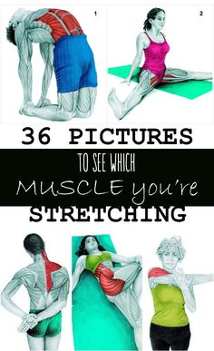 It doesn't matter if you're a chronic sitter, a daily exerciser, or a weekend warrior, most understand the benefits of stretching. It sends blood stream to your muscles and offers your joints assistance in moving through their full scope of movement.